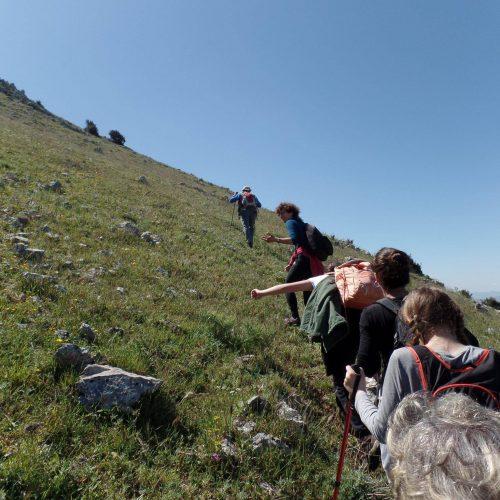 Trekking del 23-04-2017 Montagna Longa (Cinisi -Carini) (13)