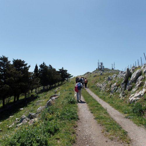 Trekking del 23-04-2017 Montagna Longa (Cinisi -Carini) (18)