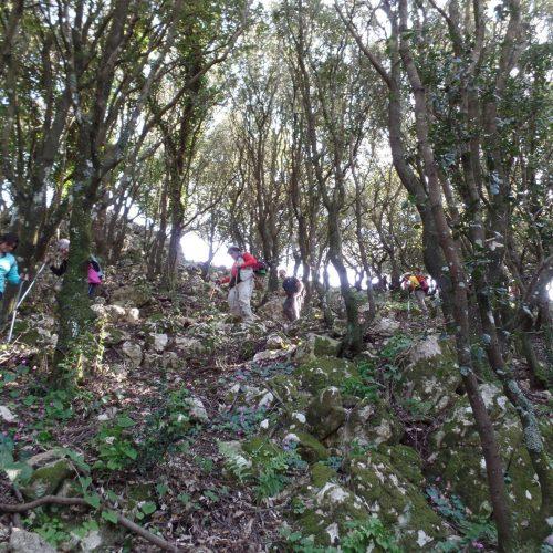 Trekking del 23-04-2017 Montagna Longa (Cinisi -Carini) (20)