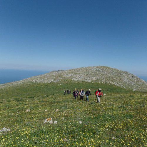 Trekking del 23-04-2017 Montagna Longa (Cinisi -Carini) (21)