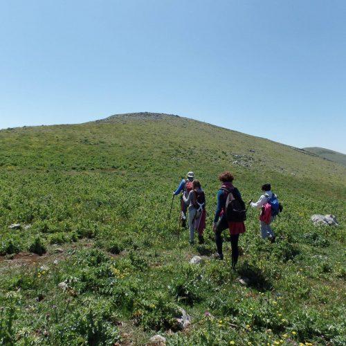 Trekking del 23-04-2017 Montagna Longa (Cinisi -Carini) (26)