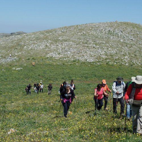 Trekking del 23-04-2017 Montagna Longa (Cinisi -Carini) (27)
