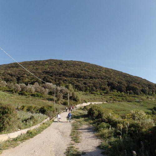 Trekking del 23-04-2017 Montagna Longa (Cinisi -Carini) (7)