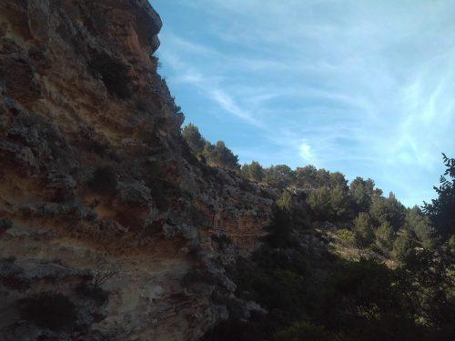 Programma Trekking – 3°/18, Bosco di C/da Frassino ( Partanna)