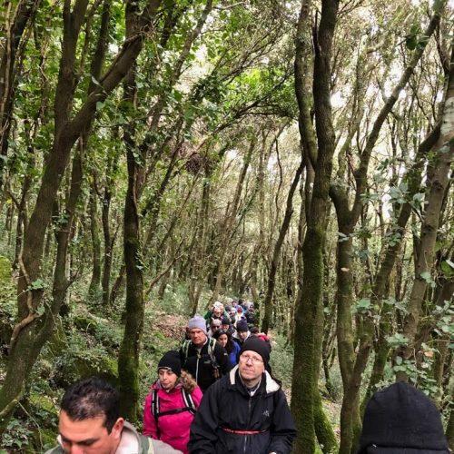 trekking del 30.12 (24)