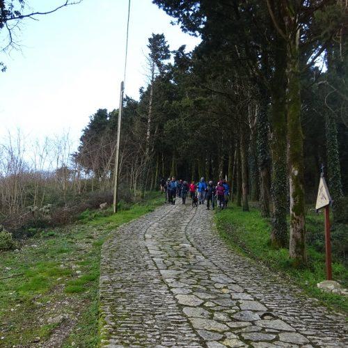trekking monte bonifato 20.01.19 (104)