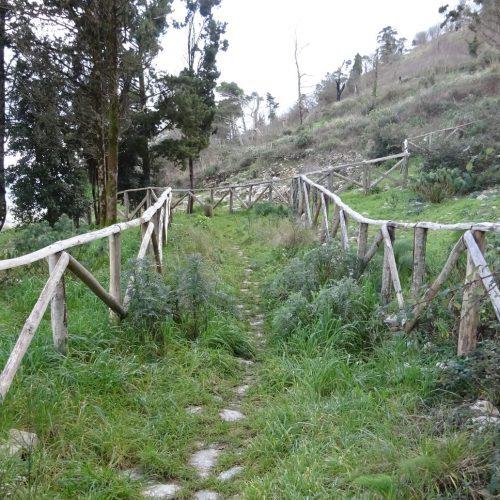 trekking monte bonifato 20.01.19 (106)