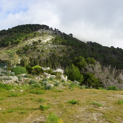 trekking monte bonifato 20.01.19 (11)