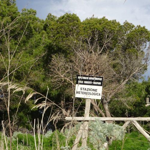 trekking monte bonifato 20.01.19 (113)