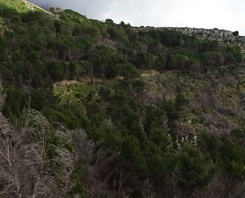 trekking monte bonifato 20.01.19 (115)
