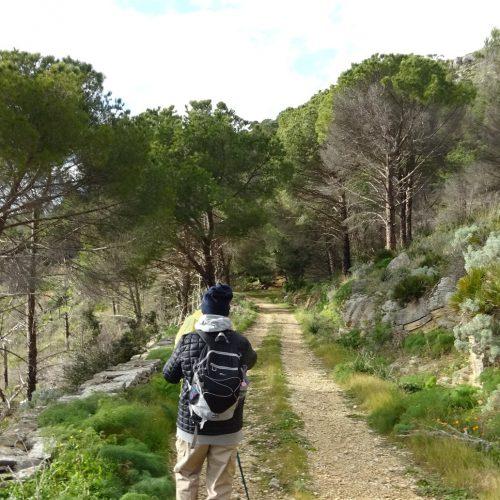trekking monte bonifato 20.01.19 (117)