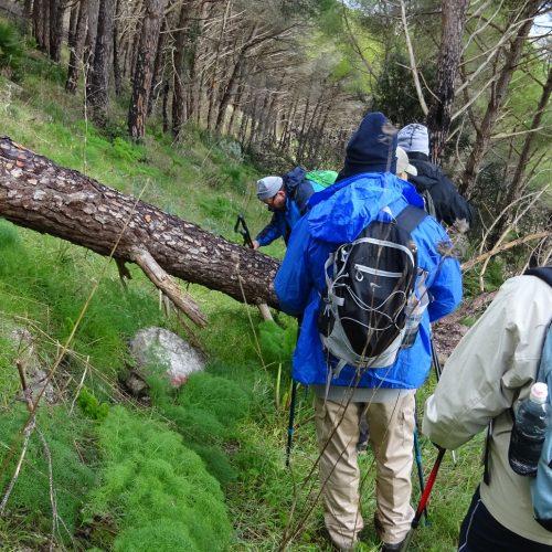 trekking monte bonifato 20.01.19 (12)
