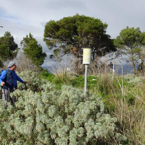 trekking monte bonifato 20.01.19 (120)