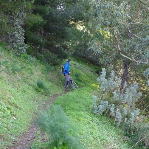 trekking monte bonifato 20.01.19 (122)