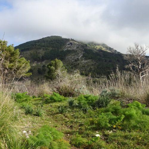 trekking monte bonifato 20.01.19 (125)