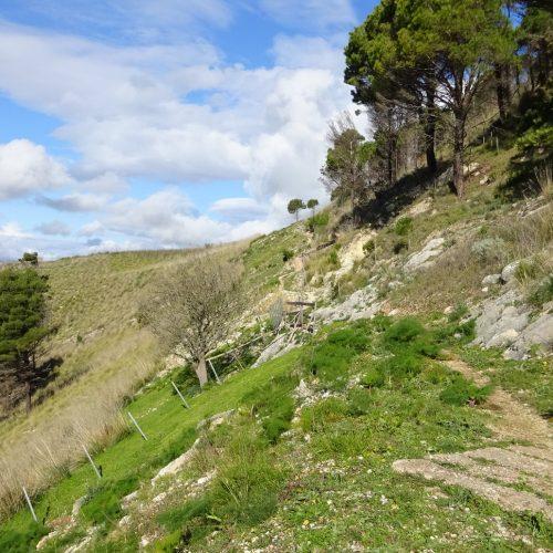 trekking monte bonifato 20.01.19 (127)
