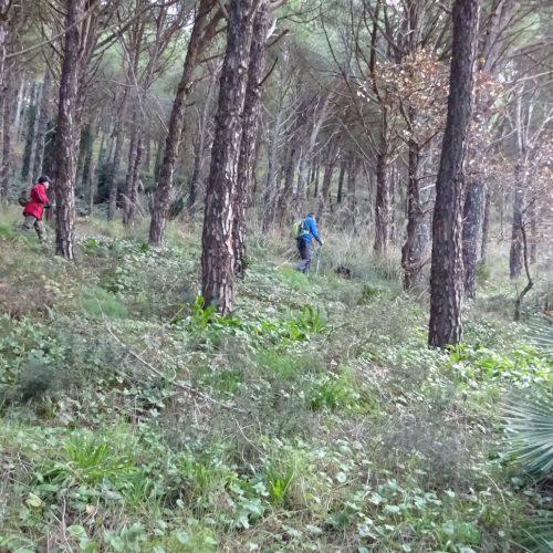 trekking monte bonifato 20.01.19 (138)