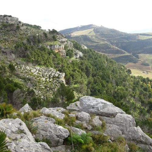 trekking monte bonifato 20.01.19 (140)