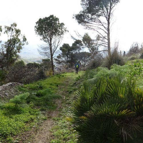 trekking monte bonifato 20.01.19 (19)
