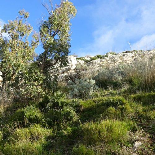 trekking monte bonifato 20.01.19 (23)