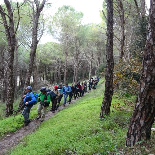 trekking monte bonifato 20.01.19 (34)