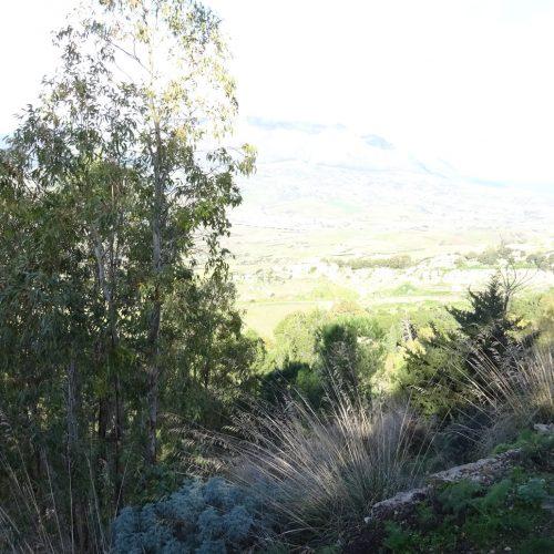 trekking monte bonifato 20.01.19 (38)