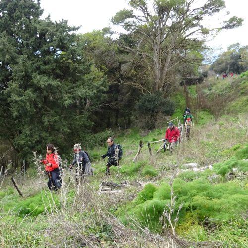 trekking monte bonifato 20.01.19 (5)