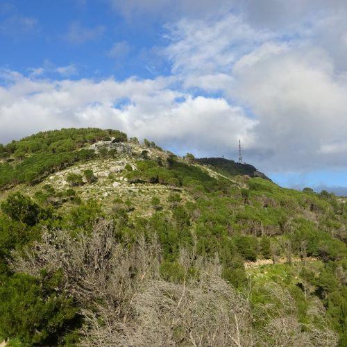 trekking monte bonifato 20.01.19 (50)