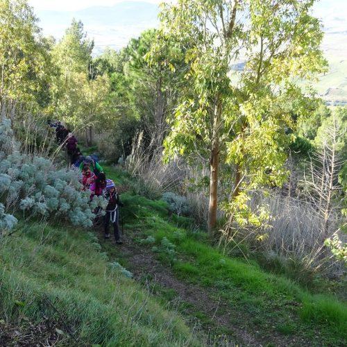trekking monte bonifato 20.01.19 (58)
