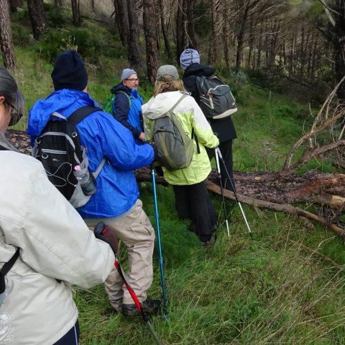 trekking monte bonifato 20.01.19 (79)