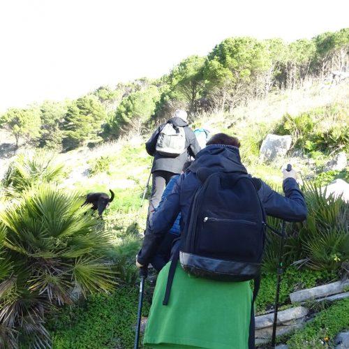 trekking monte bonifato 20.01.19 (81)