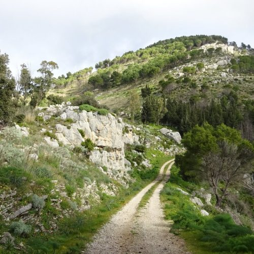 trekking monte bonifato 20.01.19 (88)