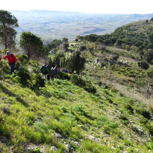 trekking monte bonifato 20.01.19 (89)