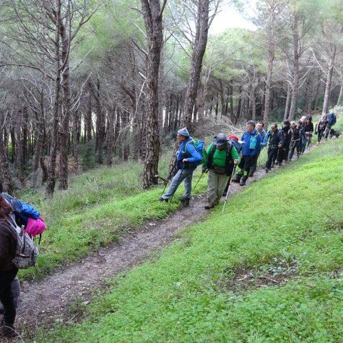 trekking monte bonifato 20.01.19 (97)