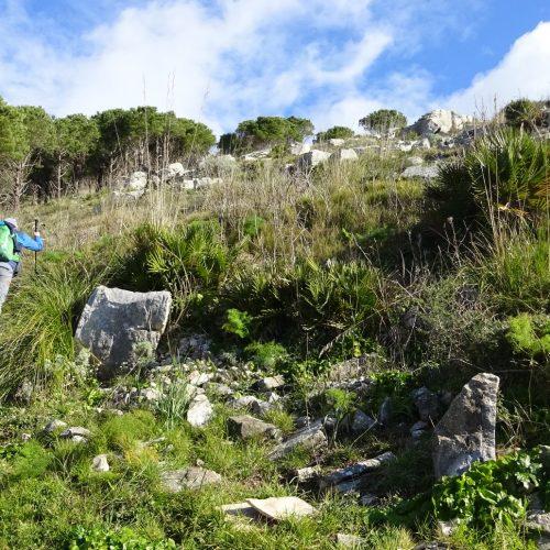 trekking monte bonifato 20.01.19 (99)