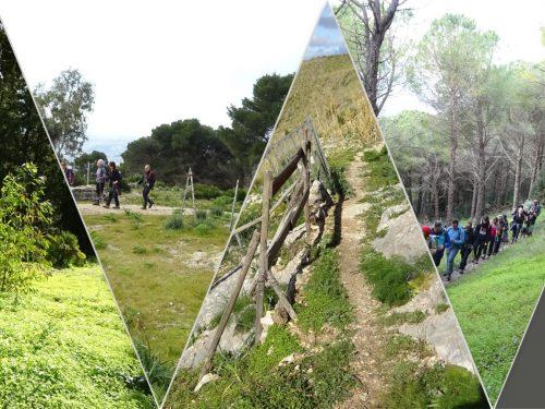 Galleria fotografica trekking Monte Bonifato 29.1.19