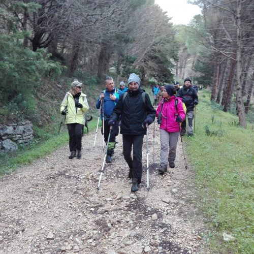 trekking naturalistico del 27.01.19 (10)