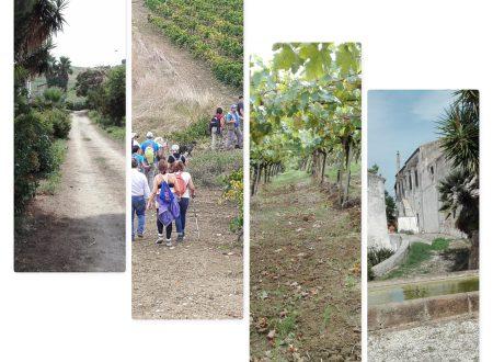 """Trekking 7°/19 –  Tra """"Feudi e Vigneti"""" Alcamo"""